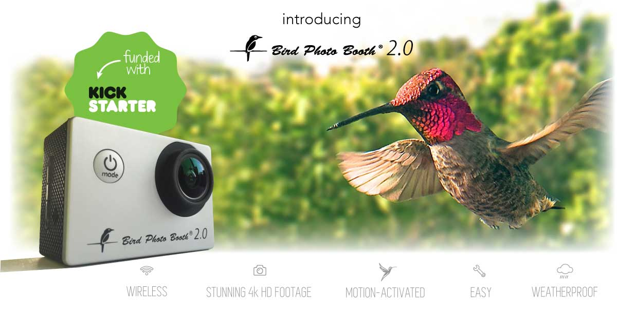 Combined bird feeder and bird cam is easy to set up anywhere you seek inspiration from nature.