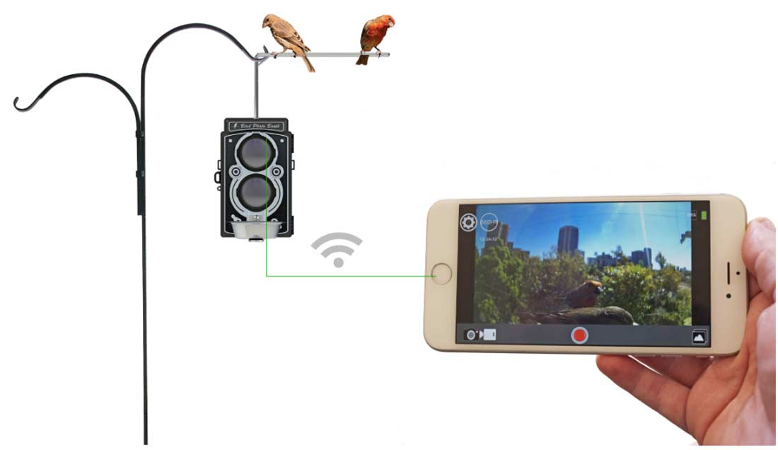 Wi-Fi live view realtime bird cam streaming to bird feeder.