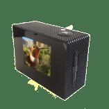 birdcam-screen