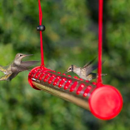 hummerbar-hummingbird-feeders